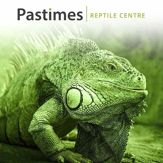 Pets & Pastimes
